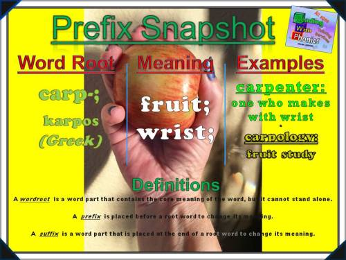 carp-prefix-snapshot