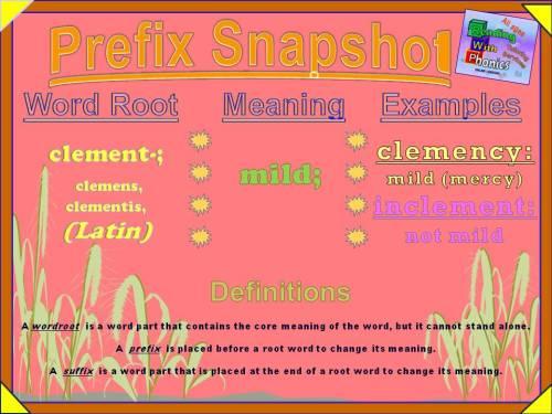 clement- Prefix Snapshot