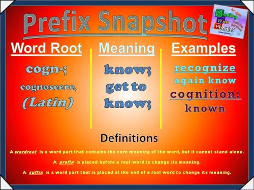 cogn- Prefix Snapshot