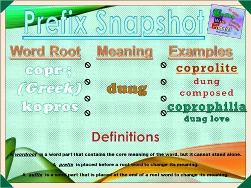 copr- Prefix Snapshot