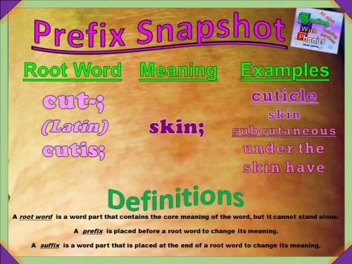 cut- Prefix Snapshot