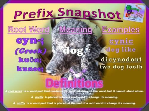 cyn- Prefix Snapshot [Autosaved]