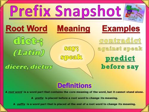 dict- Prefix Snapshot