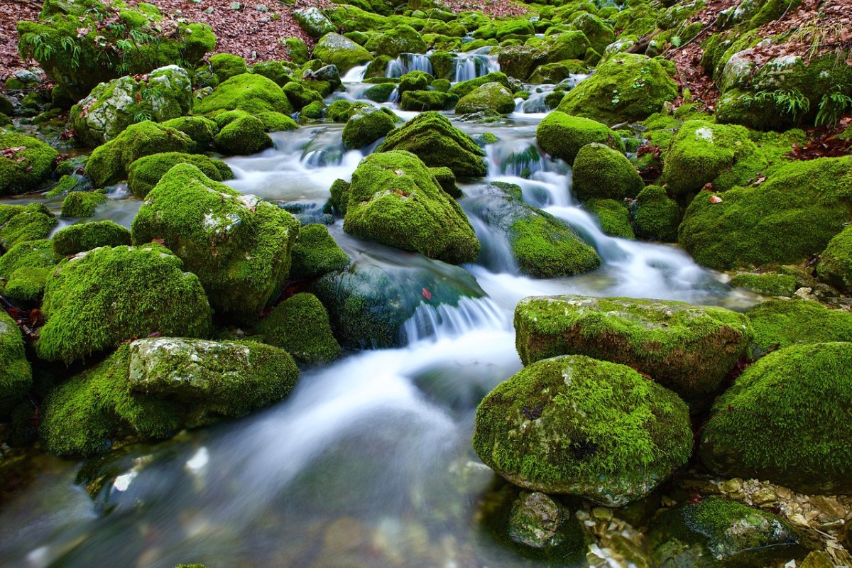 Java 8 Streams: .filter and Predicate Negation
