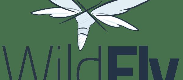 Wildfly Server