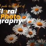 Flower Photography – A Guide To The Art of Floral Photography