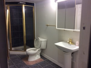 The downstairs bathroom was 12x8 with a stand-up corner shower and one pedestal sink, lots of empty floor space, and a full-on double-door closet. We'll be turning this into the master bath with a double sink, vanity area, and we'll close of the closet so the door is from the bedroom instead.