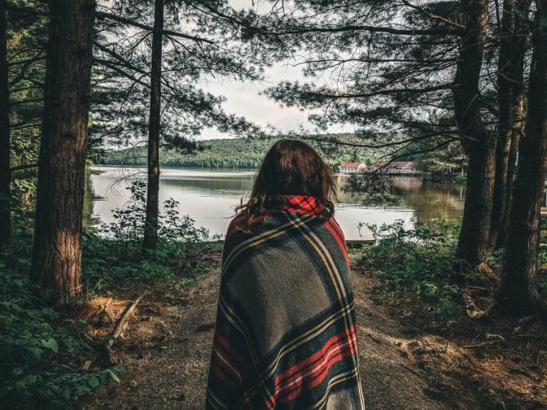 Bosques canadienses