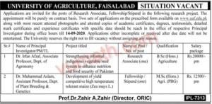 University of Agriculture Faisalabad Jobs 29 August 2020