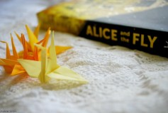 alice-and-the-fly-7