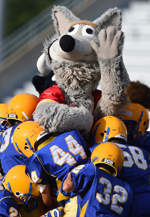 Carmel To Be Site Of NFL Mascots Vs Peewees Hamilton