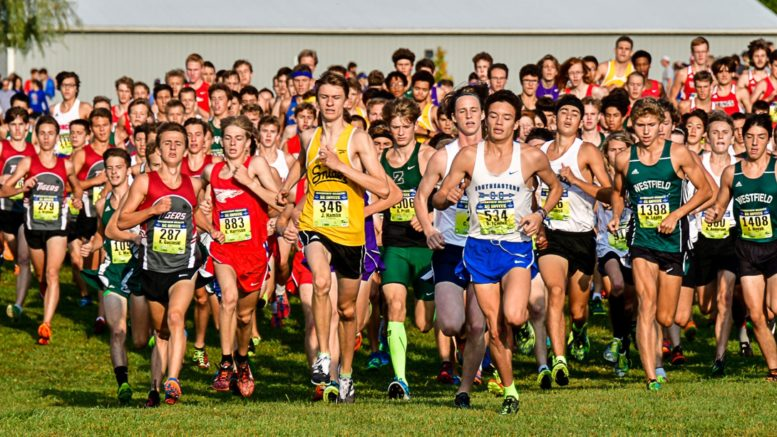 Cross Country County Teams Race Well At Flashrock Invite