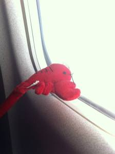 My lucky lobster pen from Maine accompanies me on the plane to residency.