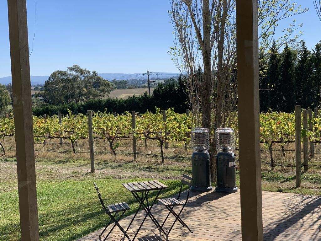 Wine Tasting in the Yarra Valley Australia