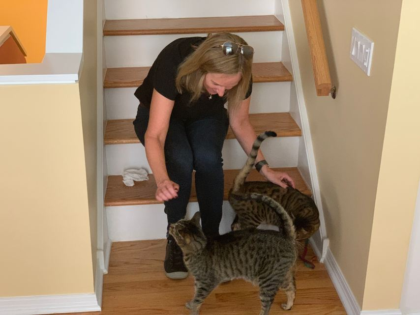Trusted Housesitters petting the cat Saved Thousands of Dollars by House Sitting