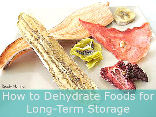 dehydrated-fruits-teethers2