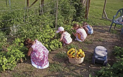 9 Things to Consider Before You Ever Grow a Survival Garden