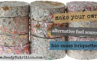Biomass Briquettes: An Alternative Fuel Source Made From Paper