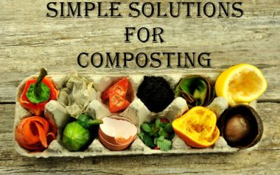 5 Simple Solutions For Composting