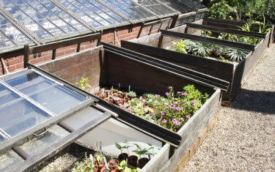 Get a Head Start on Gardening with Cold Frames