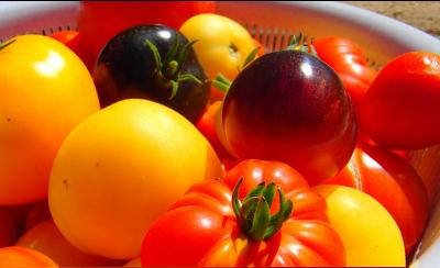 10 Amazing Health Benefits of Tomatoes