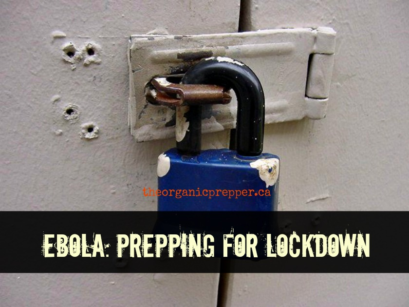 Prepping for an Ebola Lockdown: No one goes out, no one comes in