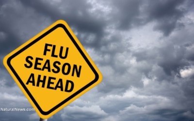 How to Prevent Flu Season Viruses from Infecting You