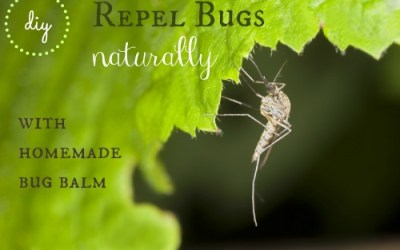 DIY: Repel Bugs Naturally with this Homemade Bug Balm