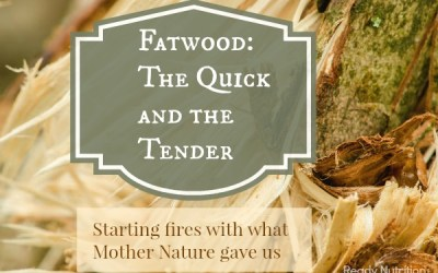 Fatwood: The Quick and the Tender