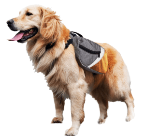 dog saddlebag