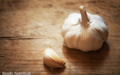 Garlic: A Natural Medicine for the Prepper's Medicine Chest