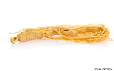 The Restorative Properties of Ginseng