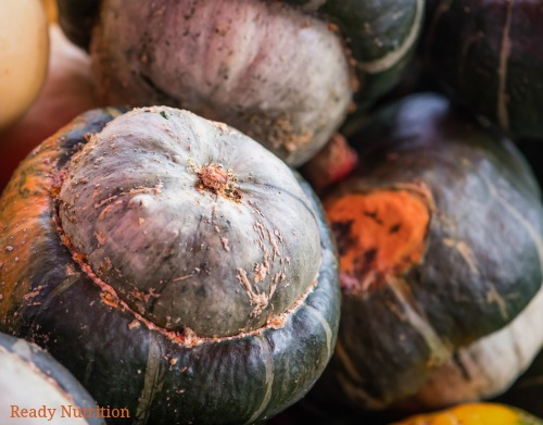 Fall brings forth an abundance of winter squash that can easily be incorporated into dishes. Here is all you need to know about harvest, storing and cooking with winter squashes. #ReadyNutrition