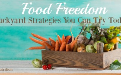 Food Freedom: Backyard Strategies You Can Try Today
