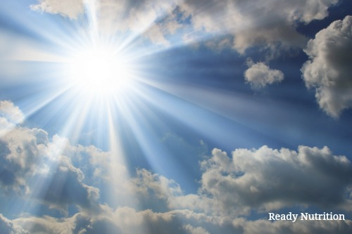 Why You Need Sunlight Everywhere You Can Get It