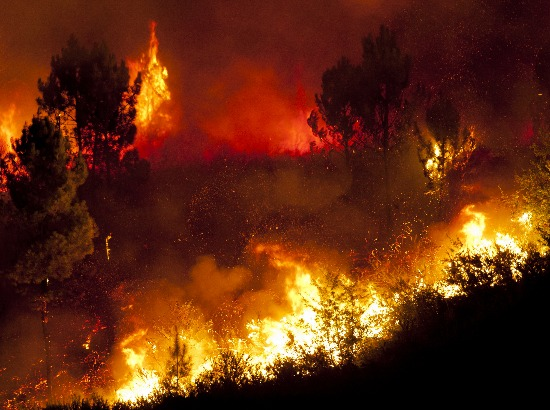 Inferno: How To Get Ready for a Rapidly Spreading Wildfire