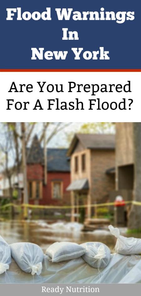ready nutrition - flash flood - ny pin
