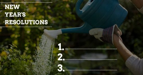 5 New Year's Resolutions To Get a Jump-Start on the Garden
