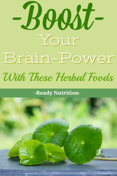"The human brain is a marvelous apparatus that we are now only beginning to understand in terms of its capabilities and functions. There are some supplements that you can take that will help in terms of brain ""improvement"" that you may be interested in. #ReadyNutrition"