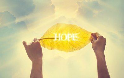 How To Find Hope in Hopeless Situations