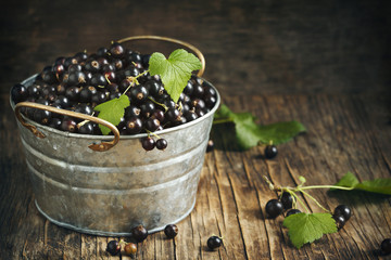 Tackle Inflammation Naturally With Blackcurrant Herbal Tinctures
