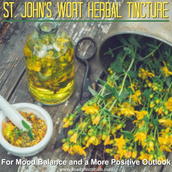 Known for its exhaustive medicinal value, St. John's Wort is one of the best herbs to add to your herbal medicine cabinet. In addition to its medicinal properties, an herbal tincture can have the powerful effect of balancing your mood and helping you achieve a more positive outlook naturally.