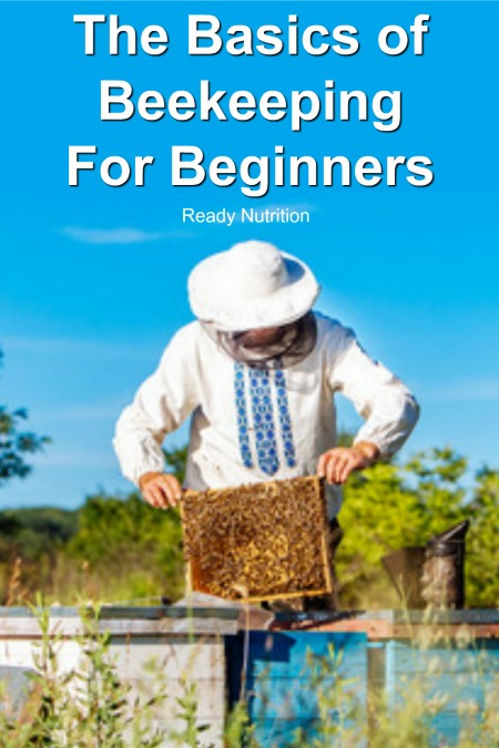 Before deciding to get into beekeeping, it's important to know what you're signing up. It may seem daunting, but beekeeping comes down knowing the basics.