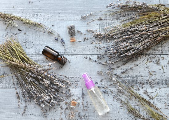 Disinfect the Air in Your Home with These Natural Purification Strategies