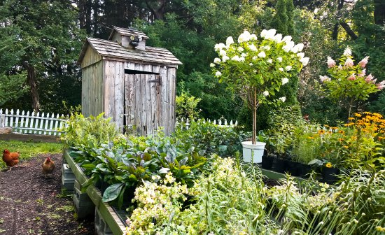 The Homesteading Primer: A Quick Guide to Small-Scale Homesteading
