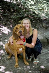 Bloodhound with woman