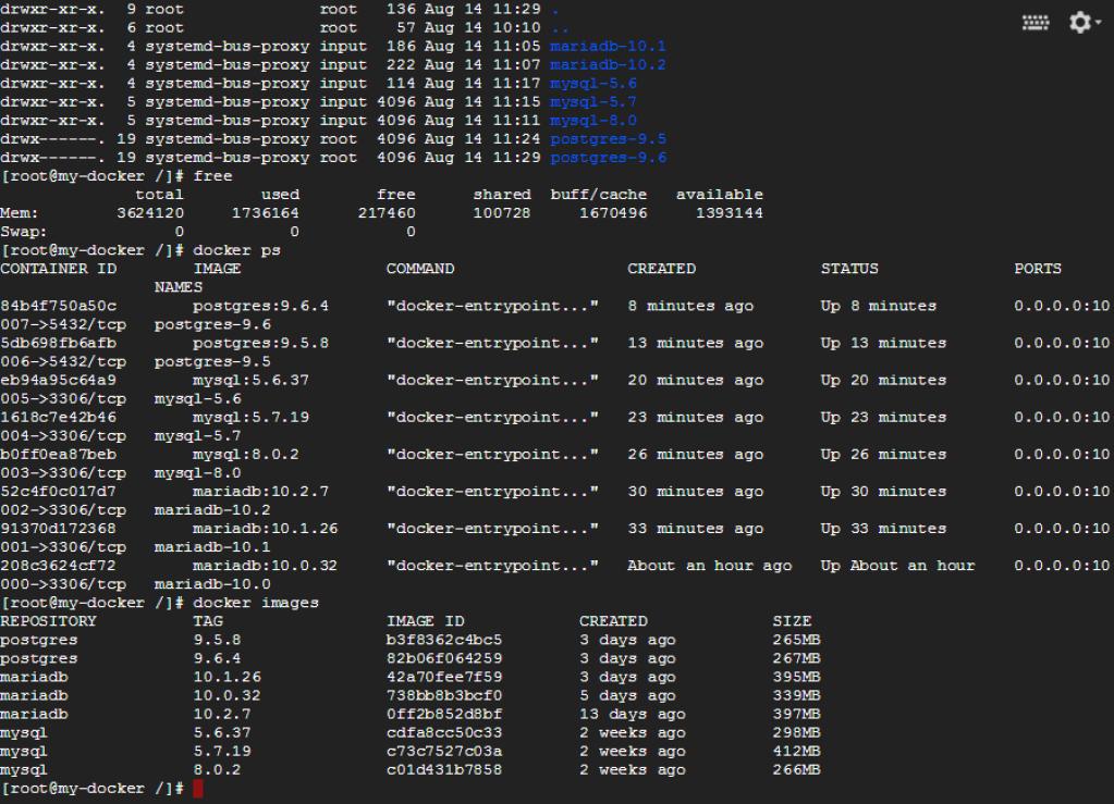 Plesk-Docker-Database-Server-3