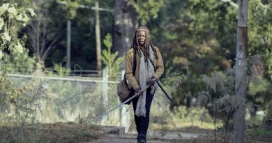 The Walking Dead Season 9 Episode 14 Recap Scars