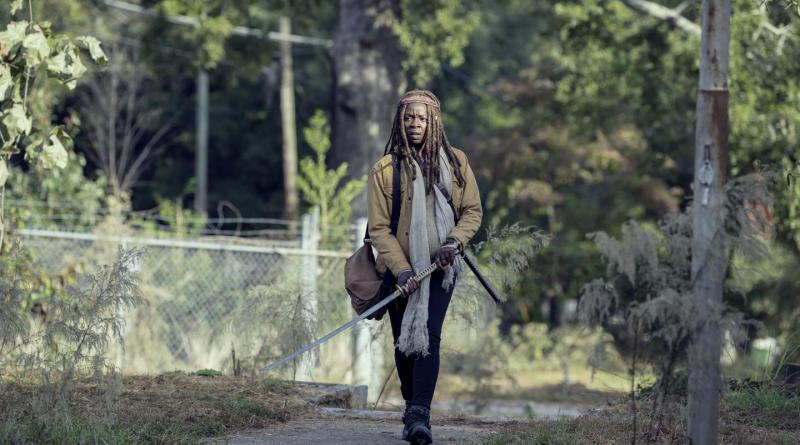 The Walking Dead Season 9 Episode 14 Recap Scars
