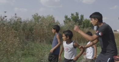 Sundance 2020: Documentary Pairs – Acasa, My Home and malni—towards the ocean, towards the shore